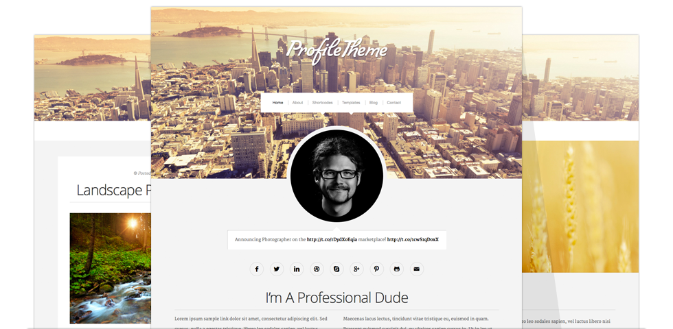 profile_theme