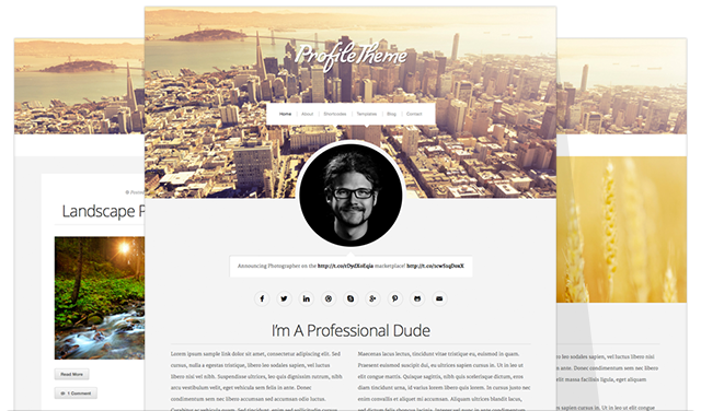profile_theme