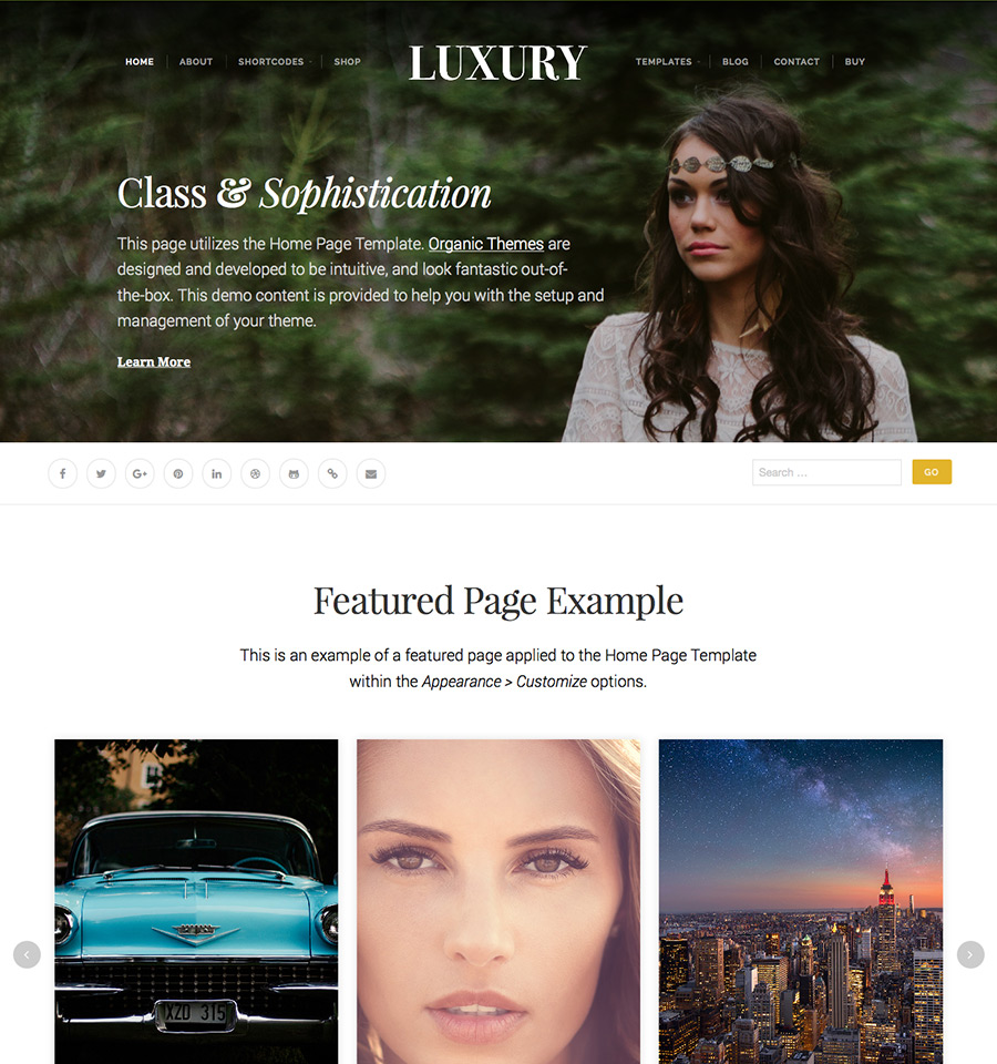 luxury-wordpress-theme-03
